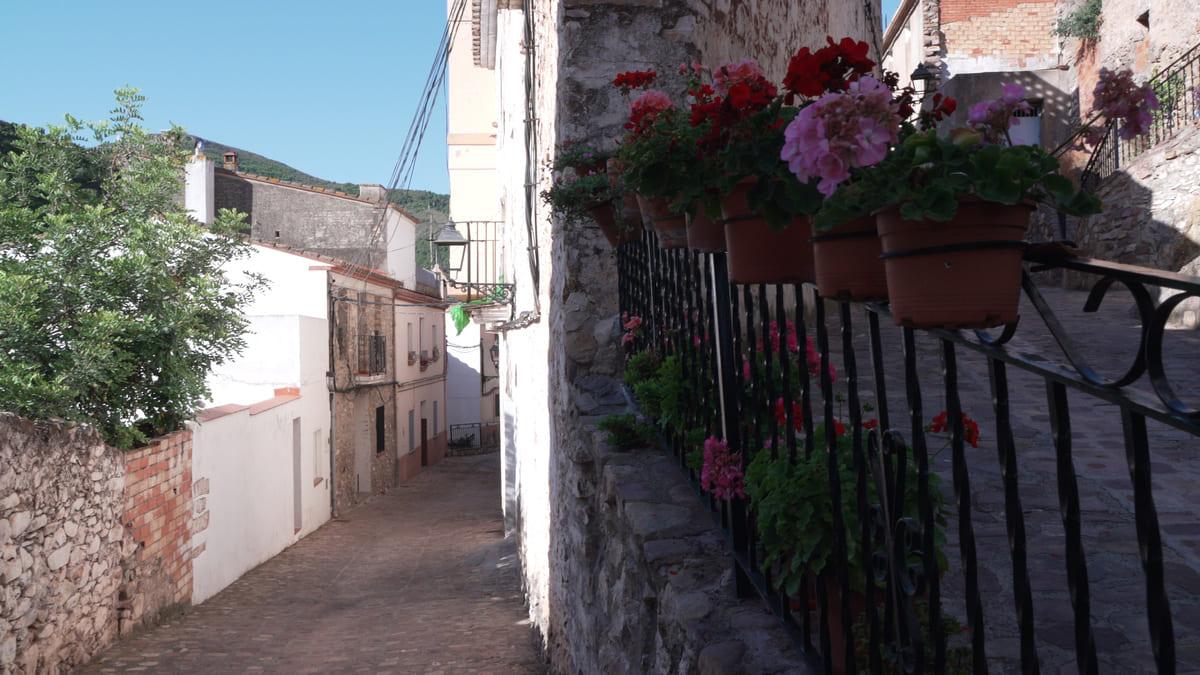 Alfondeguilla (6)